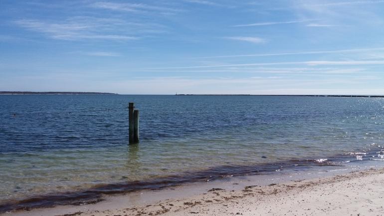 Hyannis Port Beach